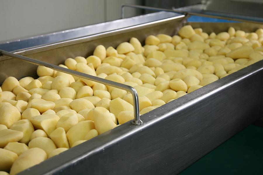 Band mit noch ungeschnittenen Bio-Kartoffeln.