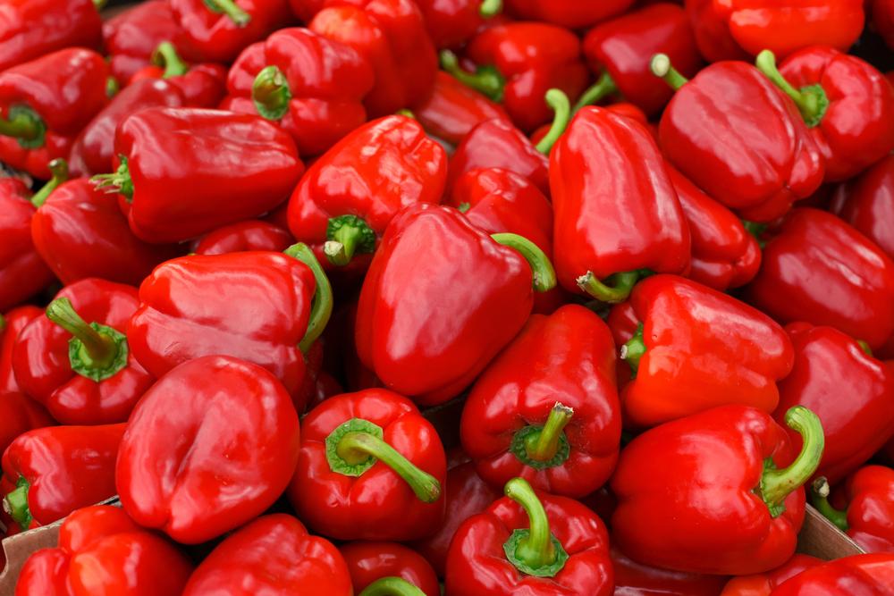 Bio-Gemüse - Bio-Paprika
