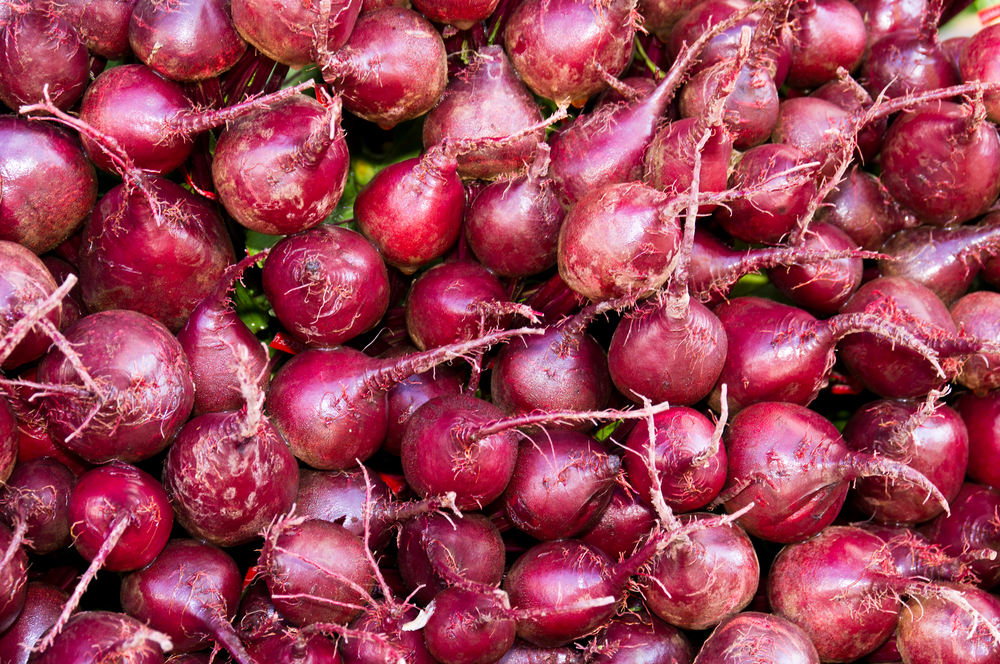 Bio-Gemüse - Bio-Rote Beete